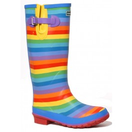 rsainbow wellies