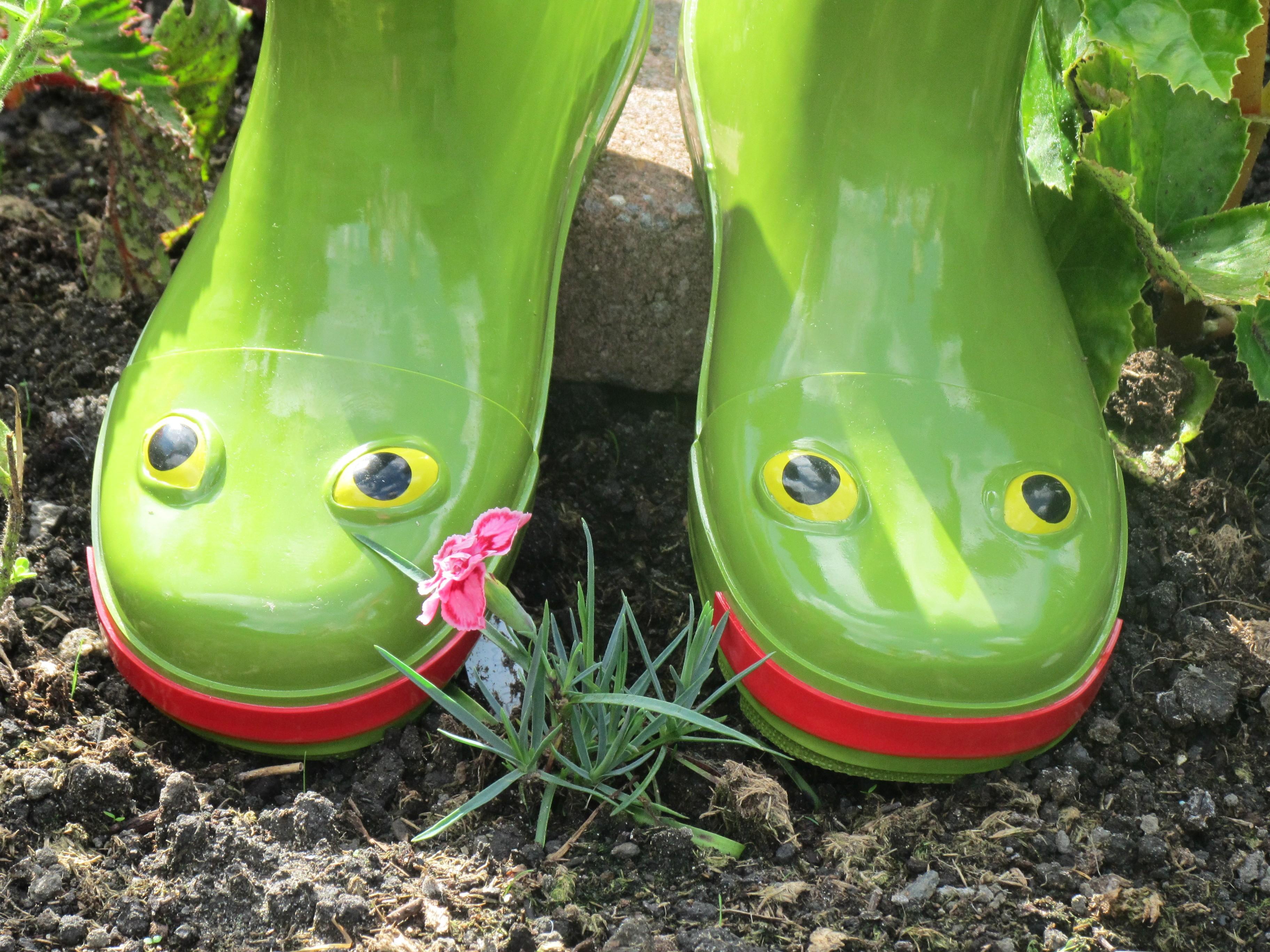 frog_wellies_2.jpg