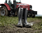 Traditional Wellies | Traditional Wellingtons | Agricultural Wellies